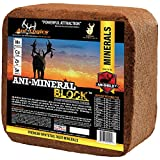 Ani Logics Outdoors Deer Mineral Block , 20 lb