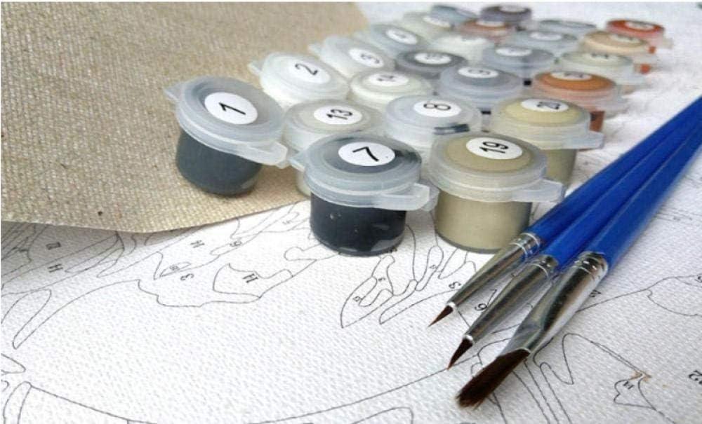 QHYH Pintura por N/úmeros Kits Gato con Gafas Leyendo un Libro 16 x 20 Pulgadas para Adultos Ni/ños DIY Pintura al /óleo sobre Lienzo con Pinceles y Acr/ílica Pinturas (Sin Marco)
