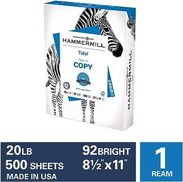 Generic Multi-Purpose Printer Copy Paper 5 Reams 8.5x11 2500 Sheets Letter