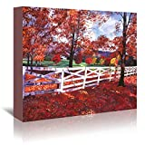 Americanflat Gallery Wrapped Canvas - Vermont Fence   - David Lloyd Glover, 32'' x 48''