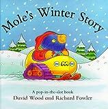 Mole's Winter Story