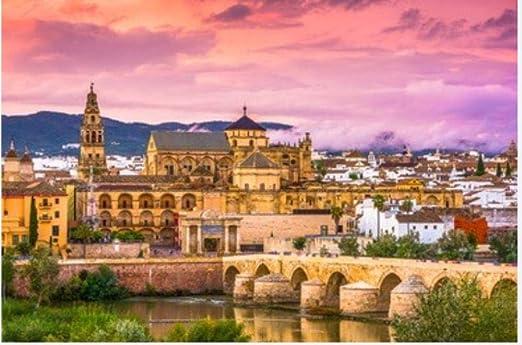ZZXSY Puzzle 1000 Piezas Educa Córdoba España En La Mezquita ...