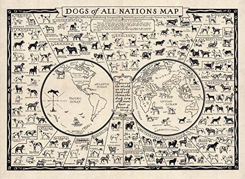 DOGS OF ALL NATIONS MAP, 1936 Vintage Map Reproduction Rolled CANVAS ART (Antique Dog Art)