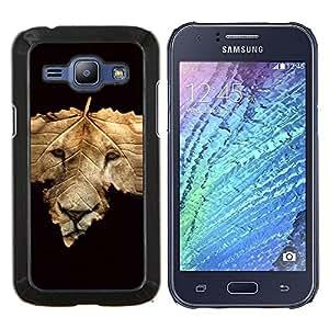 TECHCASE---Cubierta de la caja de protección para la piel dura ** Samsung Galaxy J1 J100 ** --Resumen cara del león