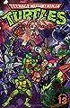 Teenage Mutant Ninja Turtles Adventures Volume 13
