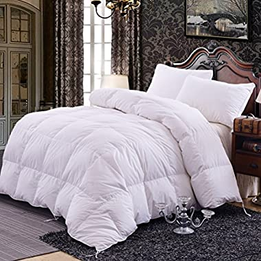 Topsleepy Luxurious All Size Bedding Goose Down Filling Comforter, White (Queen Size)