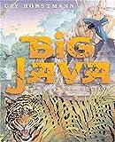 Big Java