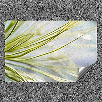 Circle CapturePhoto Nature -Lost in The Pines Outdoor Contour Wall Decor CGSignLab 5-Pack | 36x24