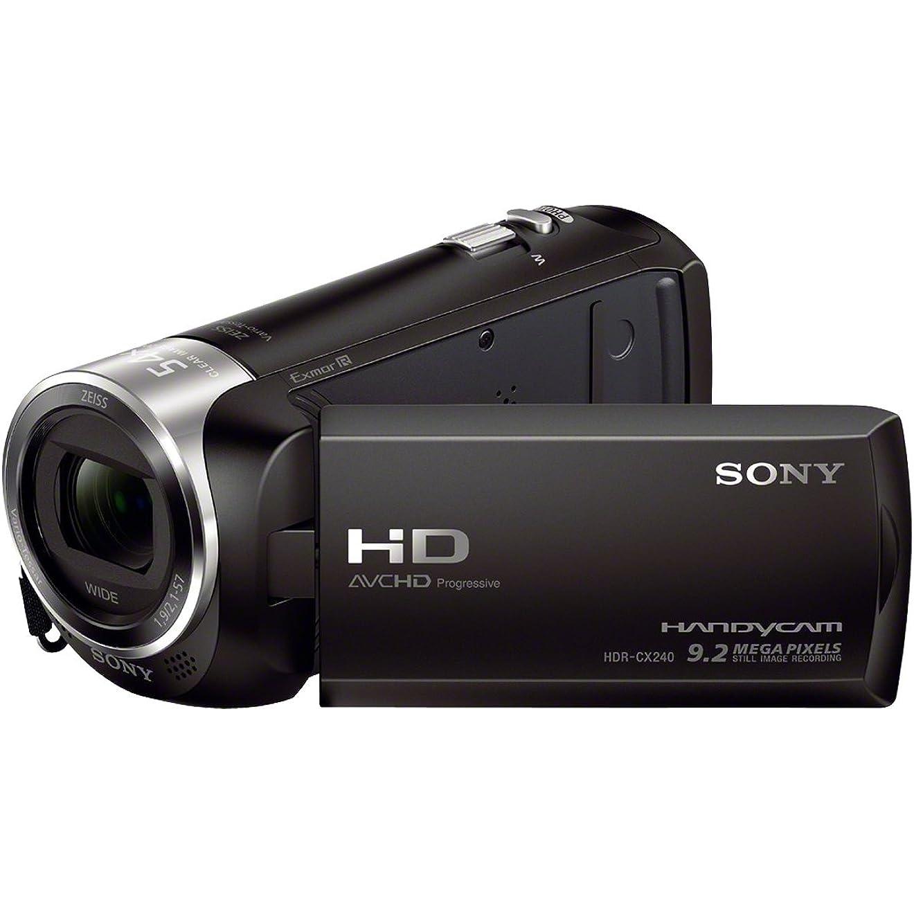 Einen guten Camcorder bekommen Sie bei der Marke Sony.