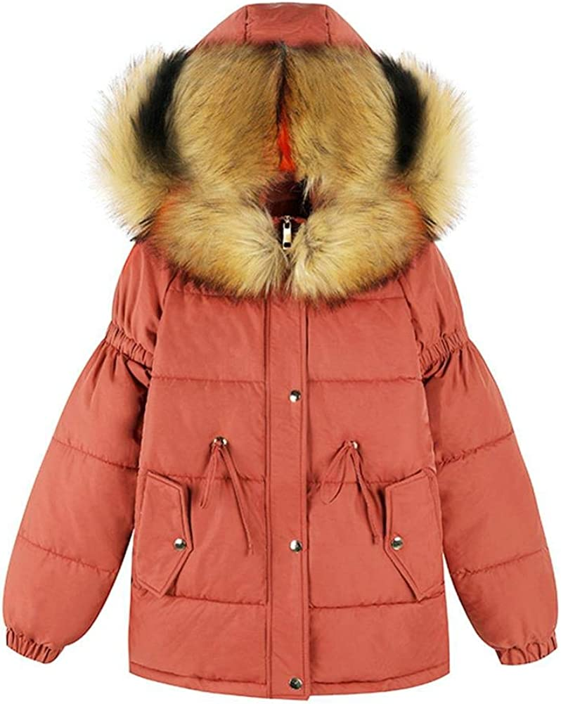 Dotoo Winter Womens Cotton Short Short Thick Warm Cotton Coat Large Fur Collar Coat
