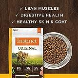 Instinct Original Grain Free Recipe with Real