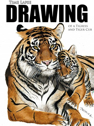 - Clip: Time Lapse Drawing of a Tigress and Tiger Cub