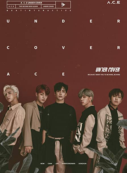 Beat Interactive Ace Ace Under Cover 2nd Mini Album 1cdphotobook1photocardcut Stickerfolded Poster