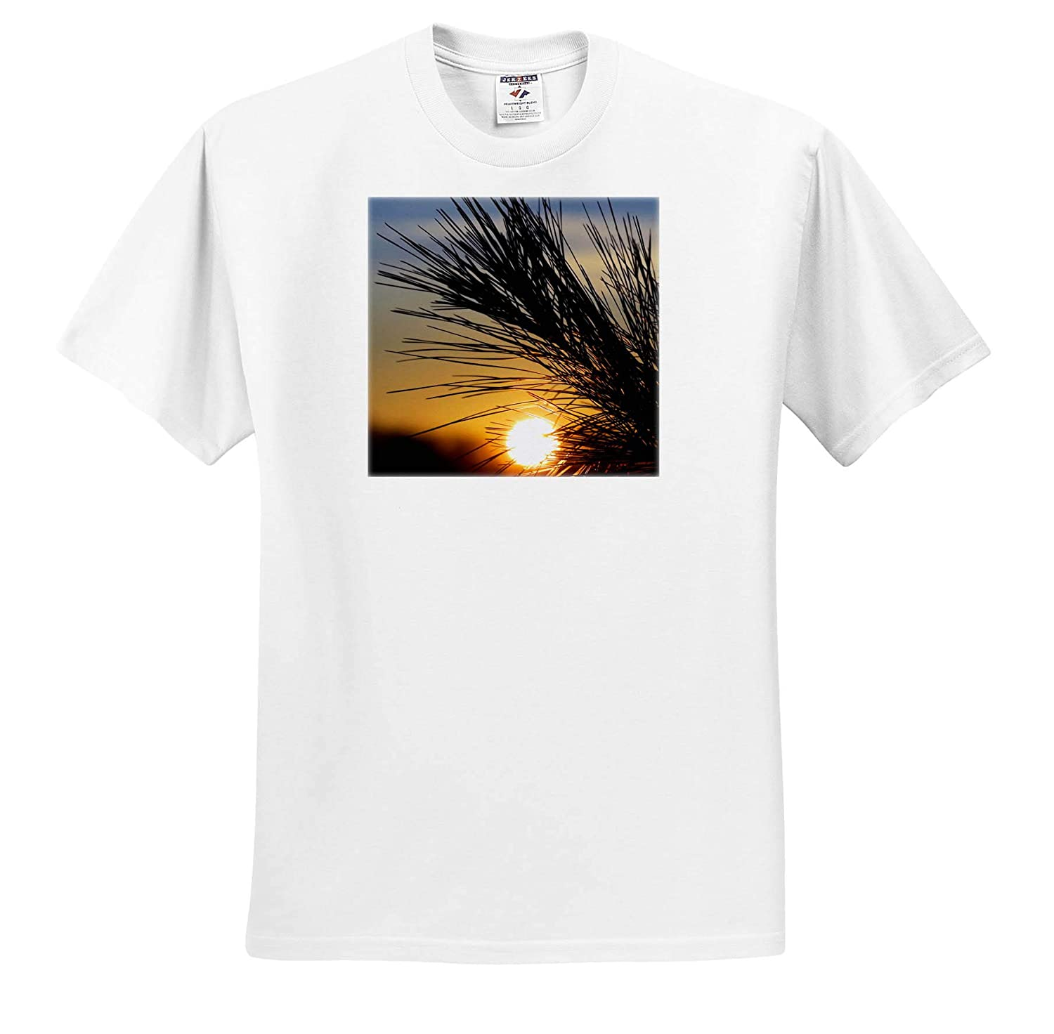 Nature - T-Shirts Photograph of The Sun Rising as it peeks Through The Pine Needles 3dRose Stamp City