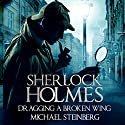 Sherlock Holmes: Dragging a Broken Wing Audiobook by Michael Steinberg Narrated by Jim D Johnston