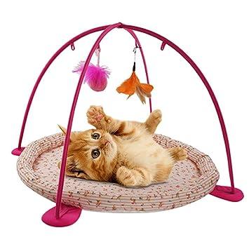 iBaste_S Interactive Juguete para Mascotas Gatos Hamaca de Gato Cama Ejercicio de Juguetecm: Amazon.es: Productos para mascotas