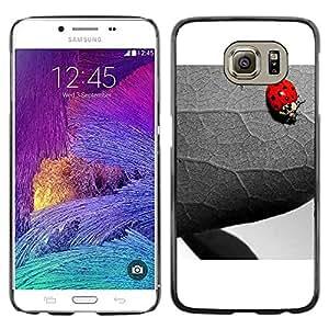 Paccase / SLIM PC / Aliminium Casa Carcasa Funda Case Cover para - The Ladybug And Leaf - Samsung Galaxy S6 SM-G920