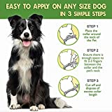 Dogs Flea and Tick Collar.16 Months Protection. Waterproof Design. Adjustable, One Size Fits Medium and Large Dogs. Grey Collar for Dogs with Natural Essential Oils.