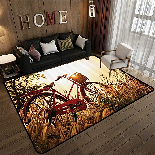 (Abstract Design Area Rug,Classic Bicycle,Retro Style Bike in Sepia Tones Romantic Sunset Picture 63