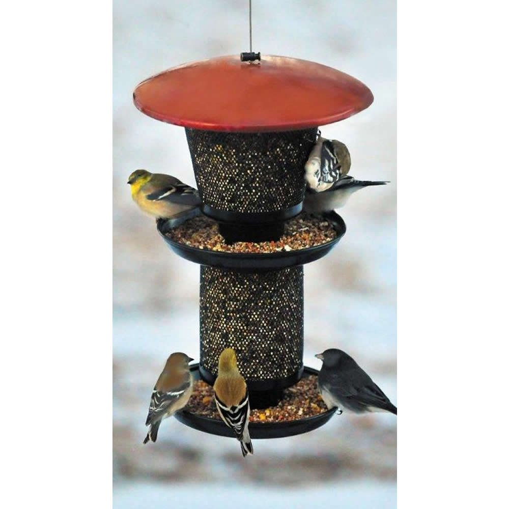 No/No Multi Seed Feeder, Red and Black  RBMS00341 by Perky-Pet