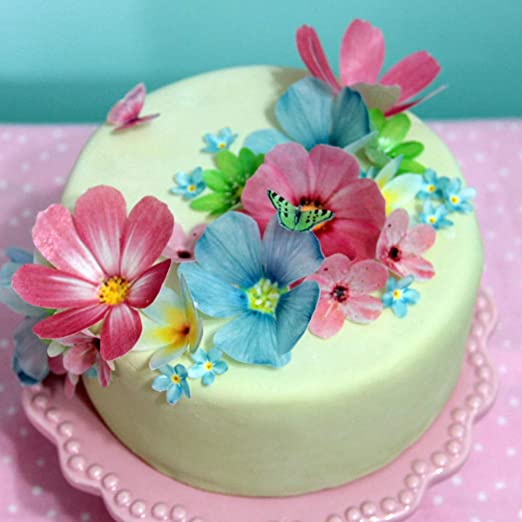 Real Edible Flowers For Cake Decorating  from images-na.ssl-images-amazon.com