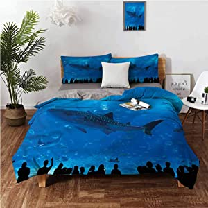Coobal Shark Sheet Set Microfiber Bedding California King Aquarium Park and People Wrinkle, Fade, Stain Resistant Washed