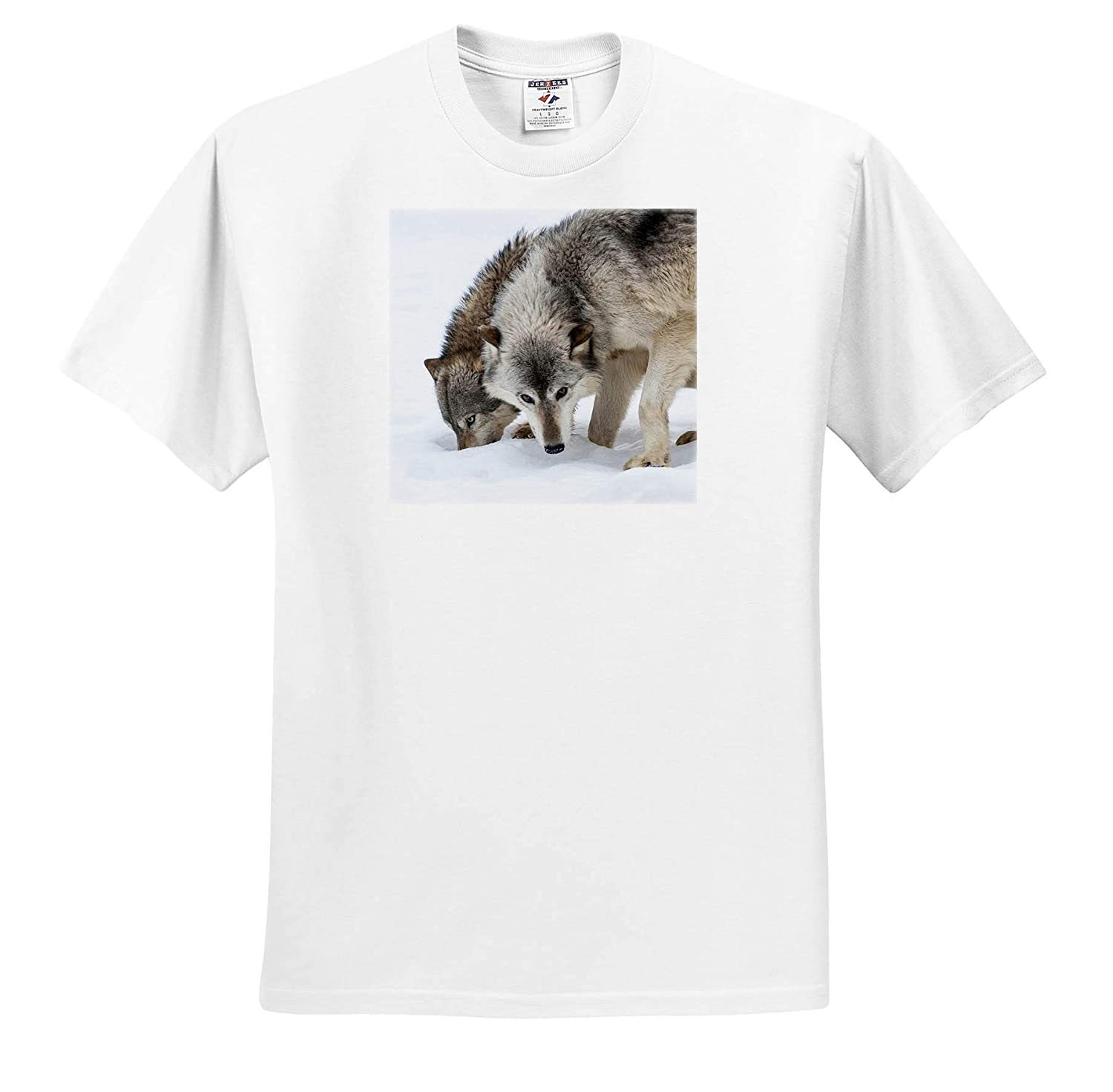 Wolves ts/_314875 Wolves Digging in The Snow Sandstone USA Minnesota Adult T-Shirt XL 3dRose Danita Delimont