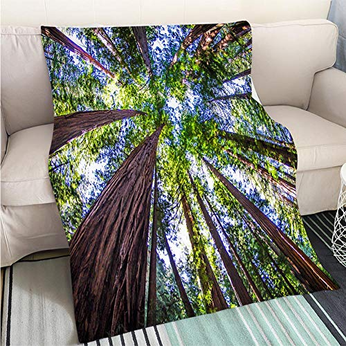 Creative Flannel Printed Blanket for Warm Bedroom Muir Woods Perfect for Couch Sofa or Bed Cool Quilt