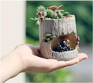 Black Bear Resin Flower Pot Planter Holder Succulent Plants Pot Home Garden Desk Decor- 7 x 7 x 9.5cm