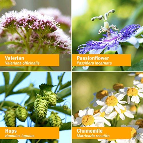 Herb Pharm Relaxing Sleep Herbal Formula with Valerian Liquid Extract - 4 Ounce by Herb Pharm (Image #1)