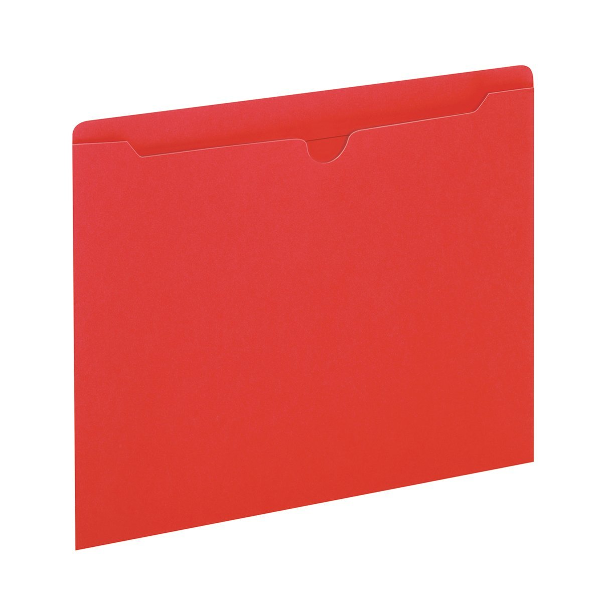 Globe-Weis Colored File Jackets, Reinforced Tab, Flat, Letter Size, Yellow, 100 Jackets Per Box (B3010DTYEL)