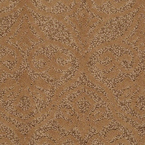 - Koeckritz Rugs Modern Amenities 44 oz Cut & Loop Indoor Pattern Area Rug (12'x14', Brass Lantern)