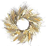 Northlight Autumn Harvest Cattail and Wheat Artificial Thanksgiving Wreath Unlit, 24'', Brown
