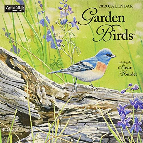 Garden Birds 2019 Calendar by