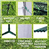 """Deluxe Green House 56"""" W x 56"""" D x 77"""" H,Walk in"""