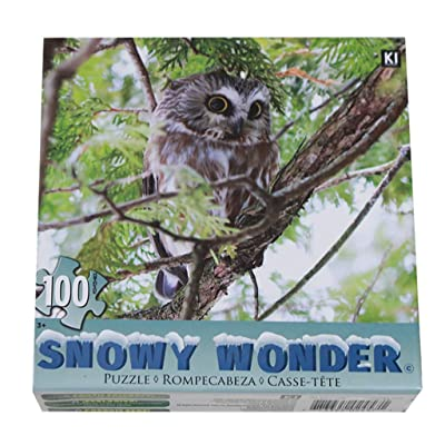 Binory Snowy Wonder Landscape Jigsaw Puzzles for Adults Children 100 Pieces,Fun Assemble Educational Intelligent Toys Brain Game Personalized Birthday Gift for Kids Teens Seniors(Owl): Toys & Games