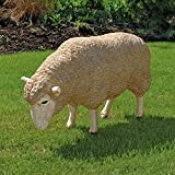 Design Toscano Merino Ewe Life Size Head Down Sheep Statue Review