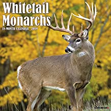 Whitetail Monarchs 2019 Wall Calendar
