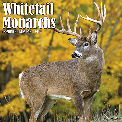 Whitetail Monarchs 2019 Wall Calendar