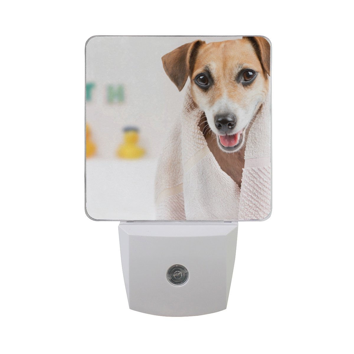LED Night Light Clean Pet Spa Auto Senor Dusk to Dawn Night Light Great for Bedroom Bathroom Living Room Hallway Any Dark Room, for Child and Adults by Saobao