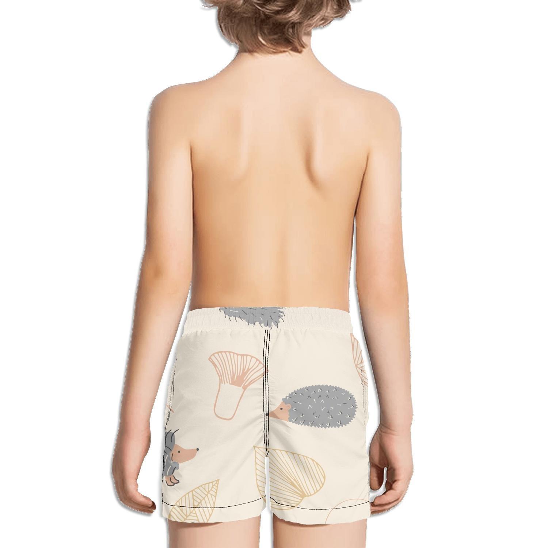 Ouxioaz Boys Swim Trunk Hedgehog fur-01 Beach Board Shorts