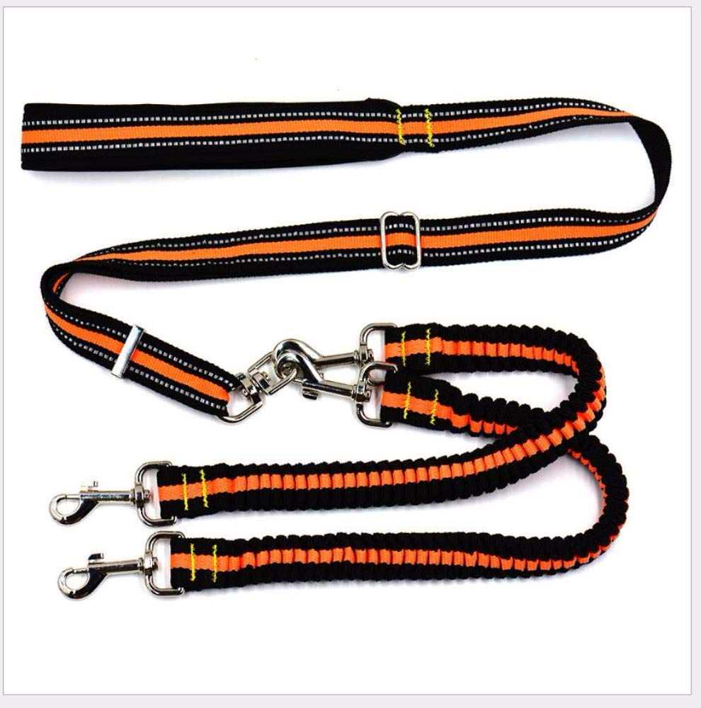 B Hhxx9 Pet Supplies Pet Traction Rope Dog Traction One for Two Nylon Traction Belt Main Traction 50-100Cm Double Head Spring Traction 70-110Cm,B