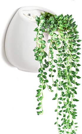 Wall Mounted Succulent Planter Y M Tm Flower Pots Indoor Ceramic Planting Vase For Succulent And Cactus Plants With Hook Amazon Ca Patio Lawn Garden