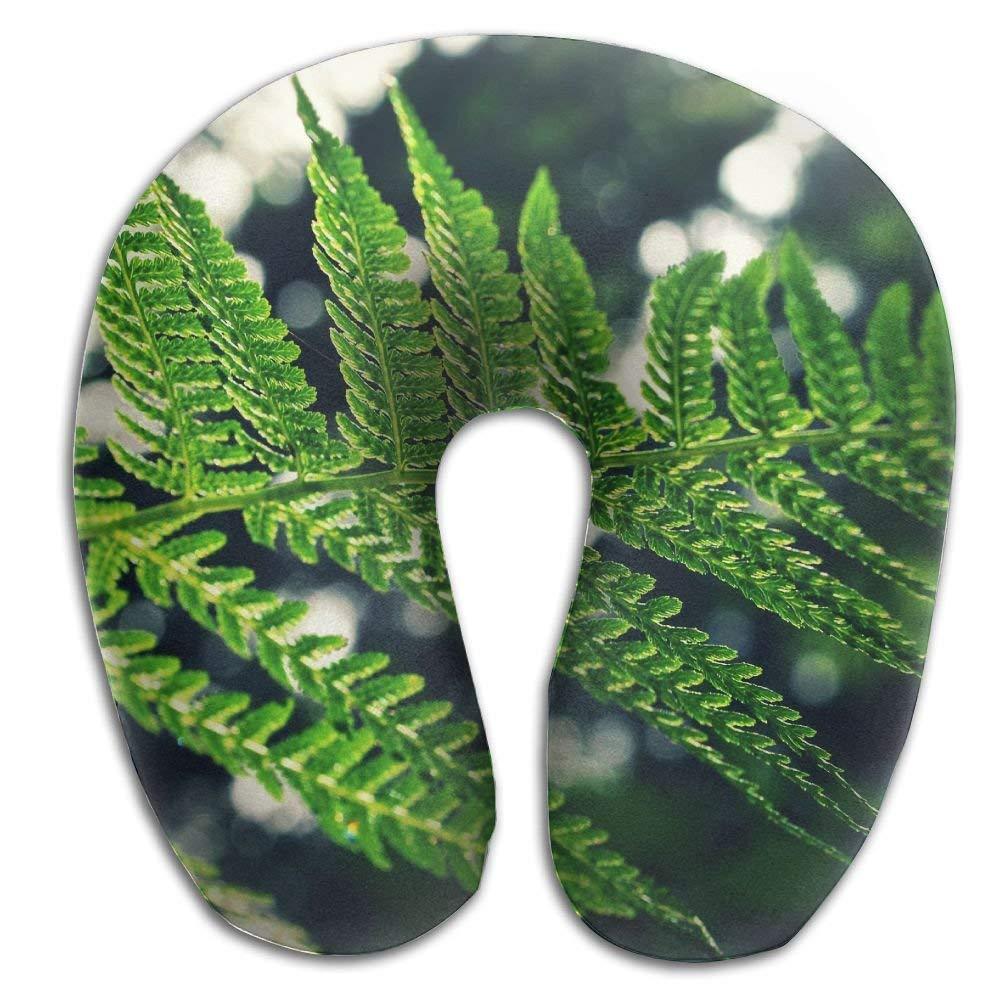 Amazoncom Sinoval Green Fresh Fern Leaf Print U Shaped