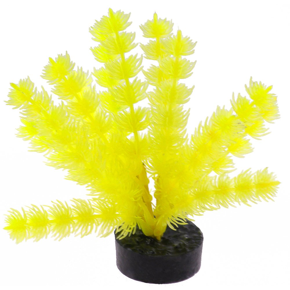bluee Ribbon Pet Products 30563 Neon Yellow color burst Plant Fox Tail