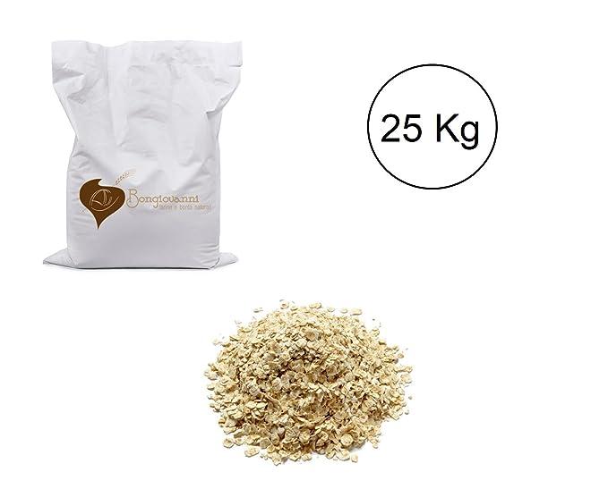 Copos de avena 25 kg BIO