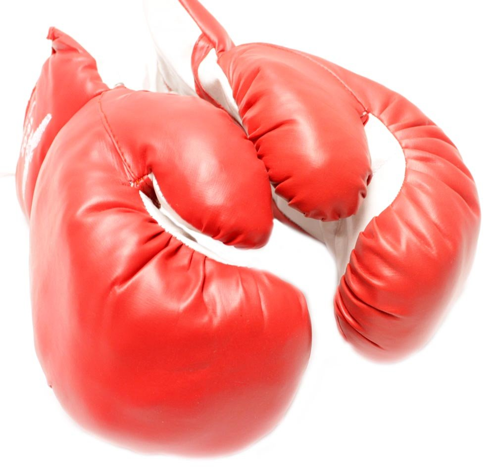 1 Pair of New Boxing/Punching Gloves and Fitness Training : Red - 10oz Rex