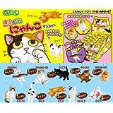 Whimsical cat mascot Petit Animal Series cat cat Candy Re-Ment (all 10 species Furukonpu set)