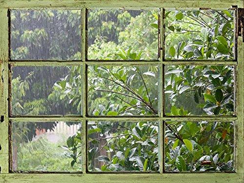 Window View Wall Mural It