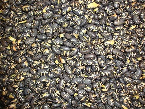 Habas de Soja Negra Tostadas 1kg | Soja Madura Tostada Ligeramente Saladas | 100% Origen Natural | Libre de Transgénicos (GMO free) | Altas en Fibra | ...